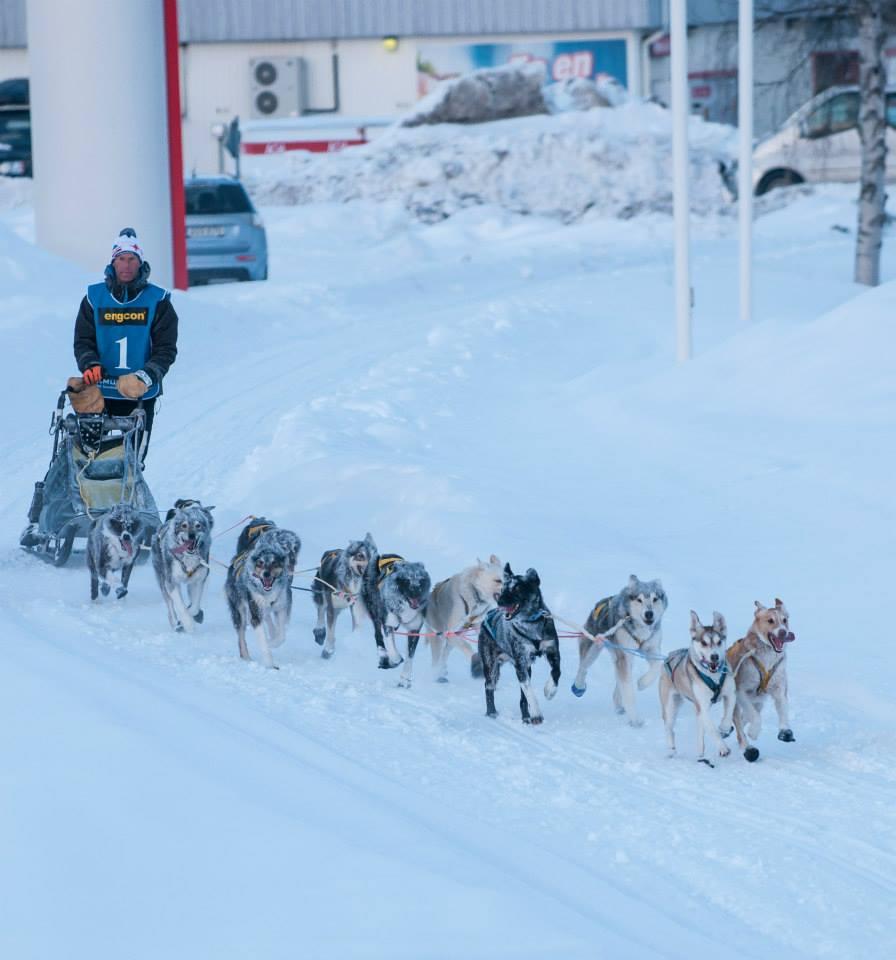 Daniel,juillaguet,musher,mushing,husky,alaskan,chien,lgo,amundsen,odysée,03